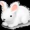 PHP AMQP Sample App